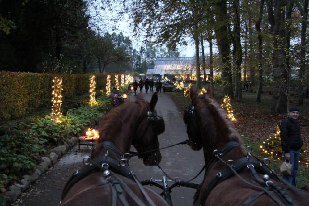 Julemarkedet på Egeskov Slot
